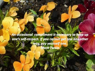 If No Compliments Are Coming Your Way, Give Yourself One!